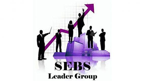 SEBS Leader Group Affärssystem